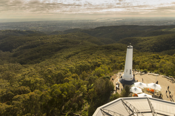 Mt Lofty